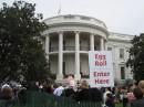 Egg roll alla Casa Bianca