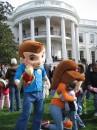 Pupazzi alla White House