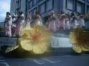 Eventi e spettacoli estivi: musica e fiori