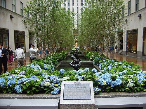 Rockefeller Center 4 19