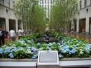 Fiori e fontane al Rockefeller Center
