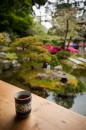 Il the nel giardino giapponese