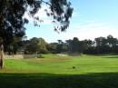 Il Golden Gate Park, un immenso parco con piste ciclabili, laghi, giardini, musei