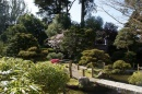 Panorama sul Japanese Tea Garden