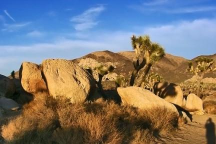Massicci rocciosi nel Joshua Tree National Park