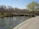 Il lago nel West Potomac Park