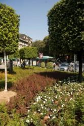 Un giardino particolare